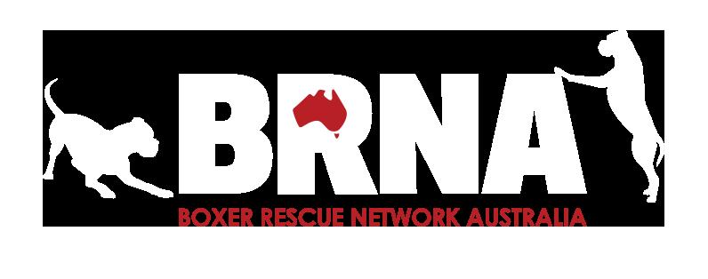 Boxer Rescue Network Australia